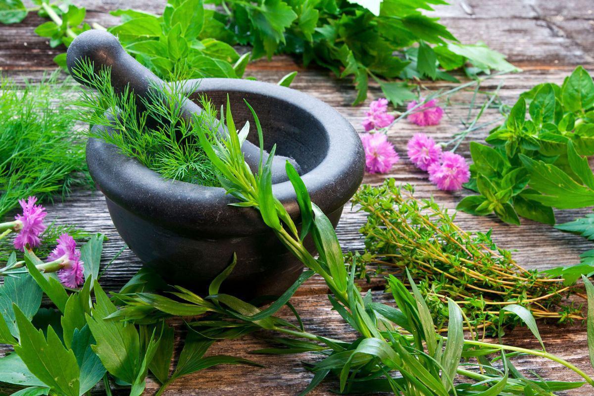 Essential oil: Modern substitute of western medicine